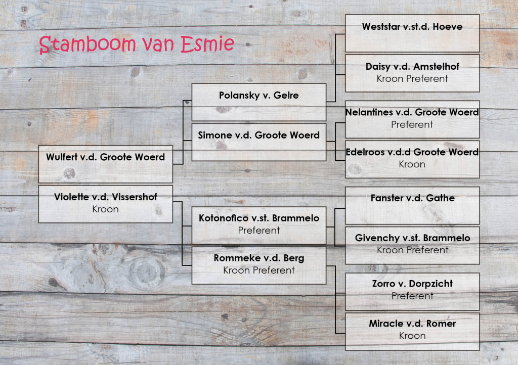 Stamboom Esmie