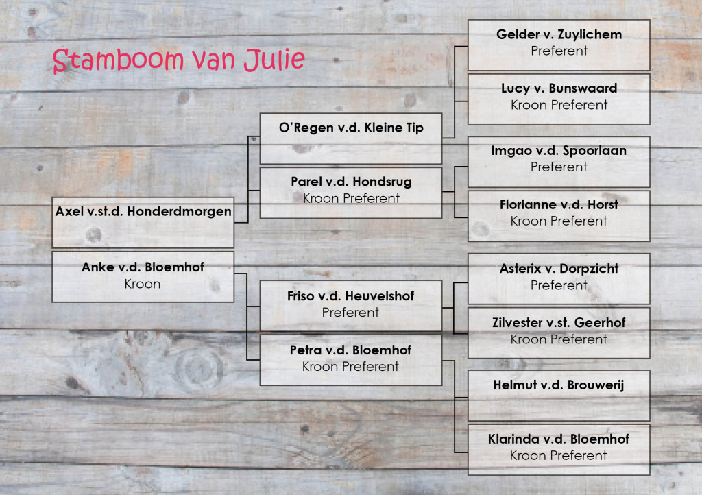 Stamboom Julie
